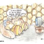 pszcz